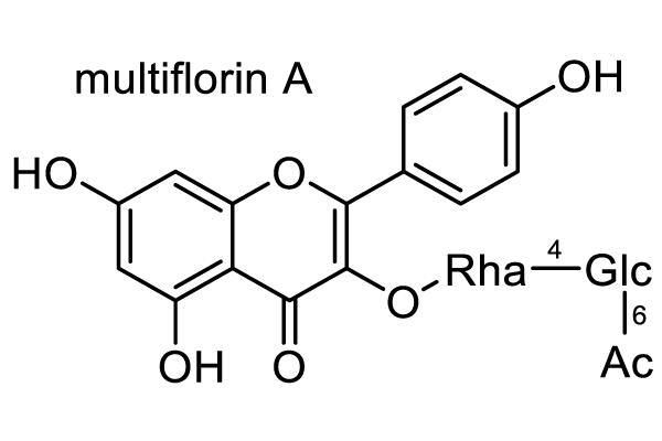 ニワウメ 化学構造式3