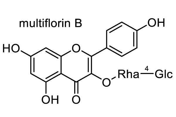 ノイバラ 化学構造式2