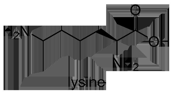 ノカンゾウ 化学構造式2