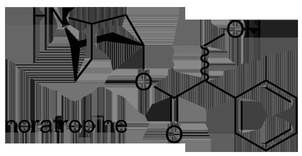 ハシリドコロ 化学構造式3
