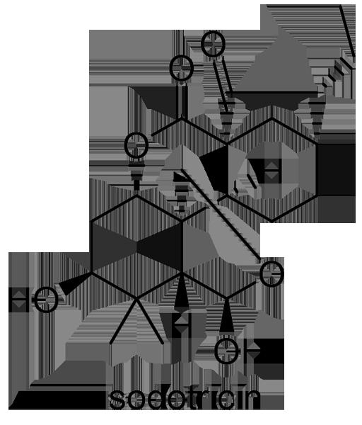 ヒキオコシ 化学構造式3