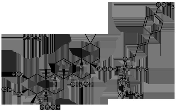 ヒロハセネガ 化学構造式2