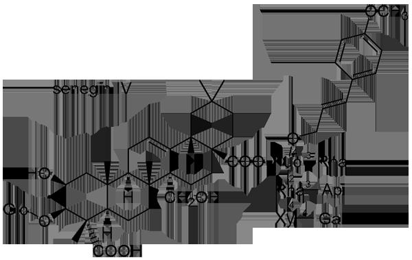 ヒロハセネガ 化学構造式3