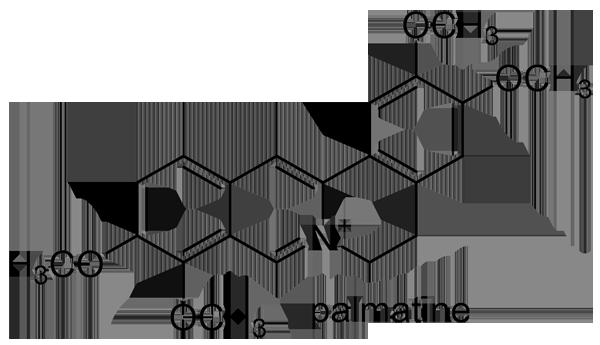 ホソバヒイラギナンテン 化学構造式3