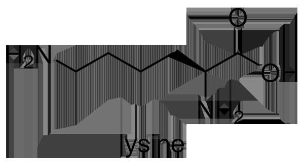 ヤブカンゾウ 化学構造式2