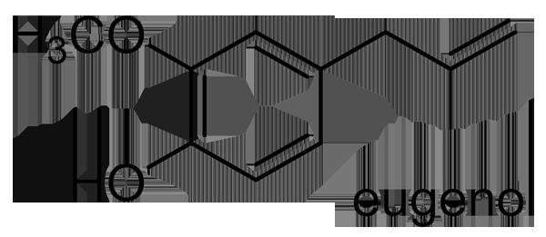 ヤブニッケイ 化学構造式2