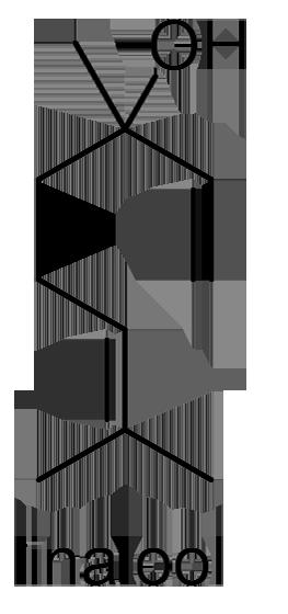 ロウバイ 化学構造式3