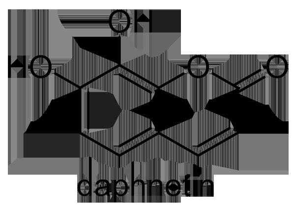 アキグミ 化学構造式3