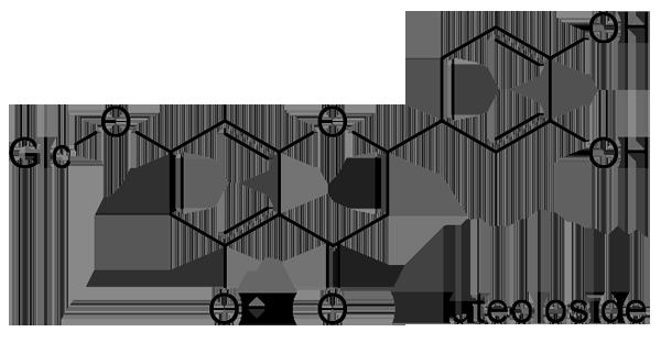 アシタバ 化学構造式2
