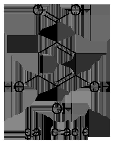 ウラジロガシ 化学構造式2