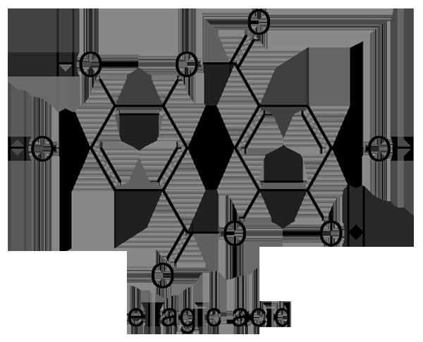 ウラジロガシ 化学構造式3