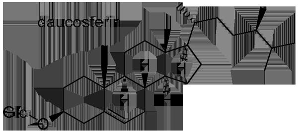 オオアブラギリ 化学構造式3