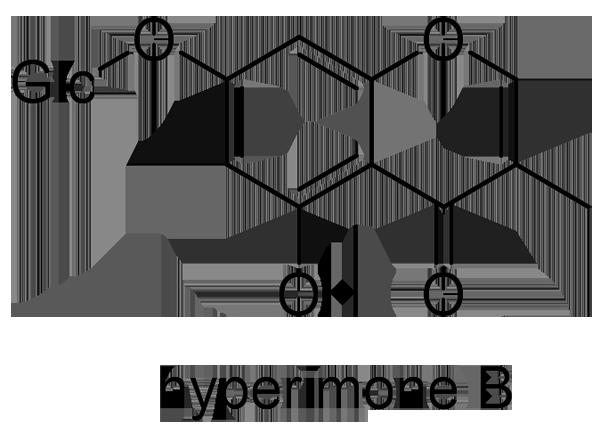 オトギリソウ 化学構造式3