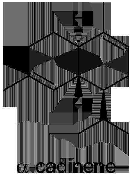 オトコヨモギ 化学構造式3