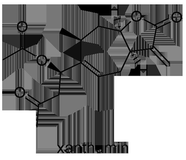 オナモミ 化学構造式2