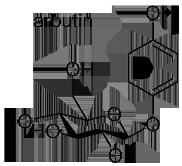 オナモミ 化学構造式3