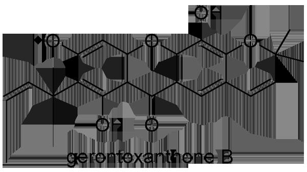 カカツガユ 化学構造式2