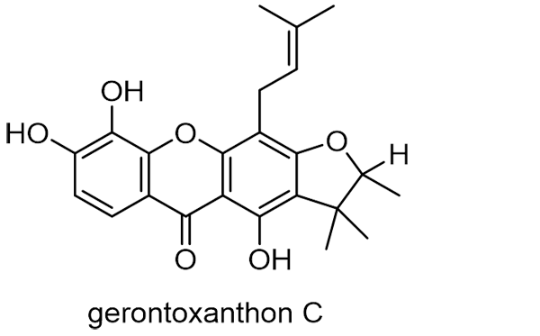 カカツガユ 化学構造式3