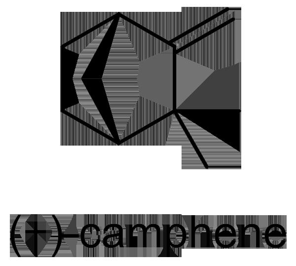 カラタネオガタマ 化学構造式2