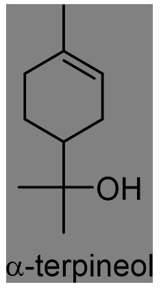 カラタネオガタマ 化学構造式3