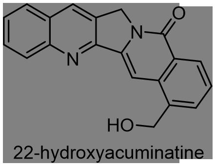 カンレンボク 化学構造式3