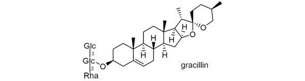 キクバドコロ 化学構造式2