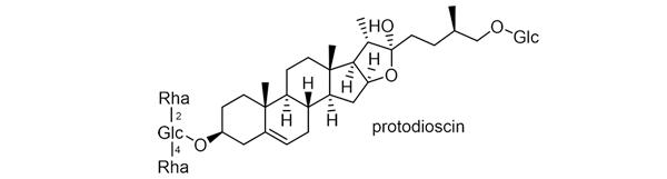 キクバドコロ 化学構造式3