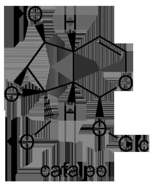 キササゲ 化学構造式2