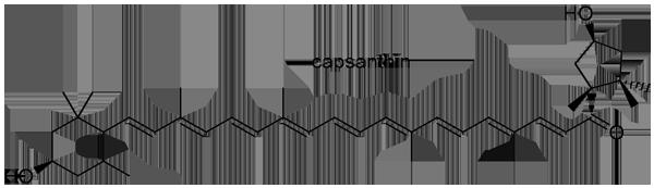 キダチトウガラシ 化学構造式3