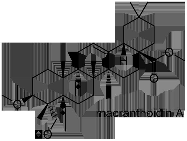 キダチニンドウ 化学構造式1