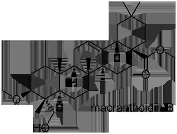 キダチニンドウ 化学構造式2