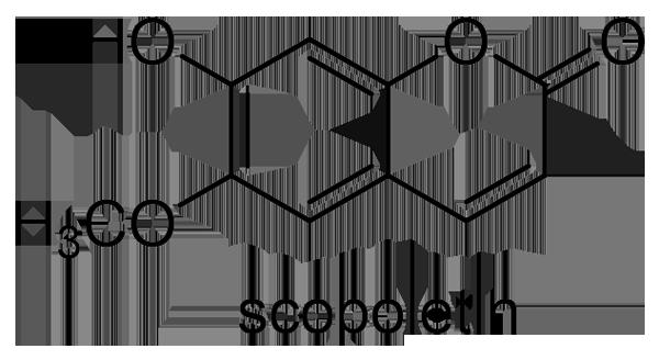 キョウチクトウ 化学構造式3