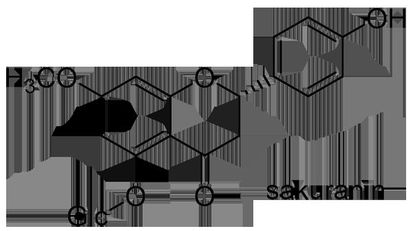 クヌギ 化学構造式2