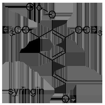 クロガネモチ 化学構造式3