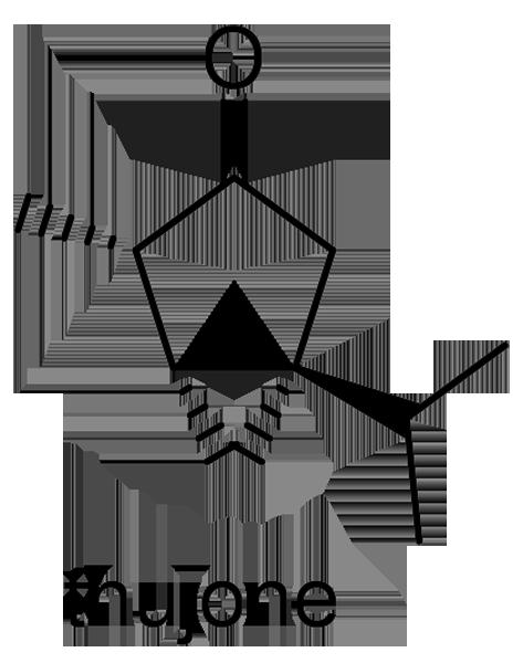 コノテガシワ 化学構造式2