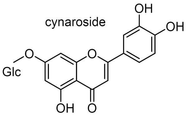 シュロ 化学構造式2