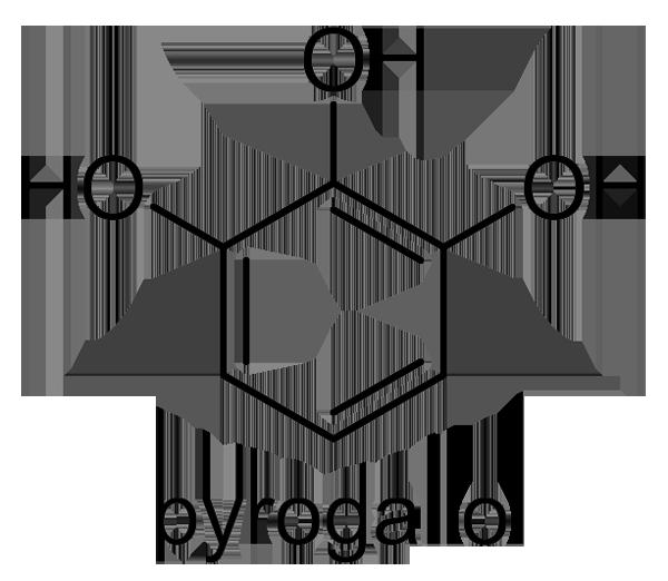 シラカシ 化学構造式3