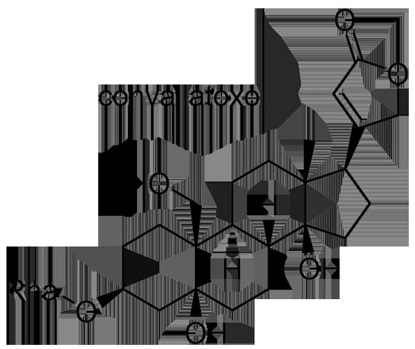 スズラン 化学構造式3