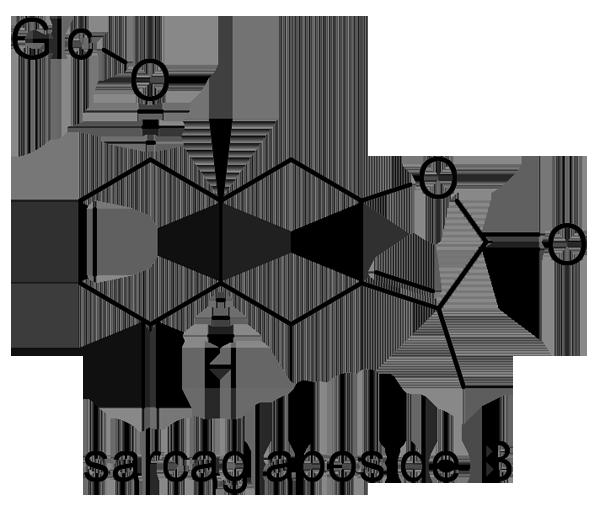 センリョウ 化学構造式2
