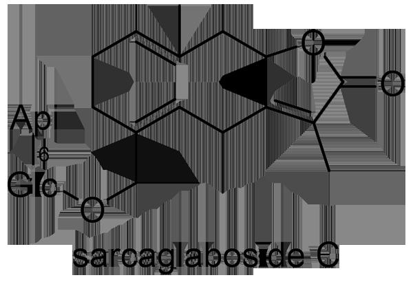 センリョウ 化学構造式3