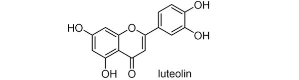 ソクズ 化学構造式3