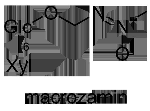 ソテツ 化学構造式2
