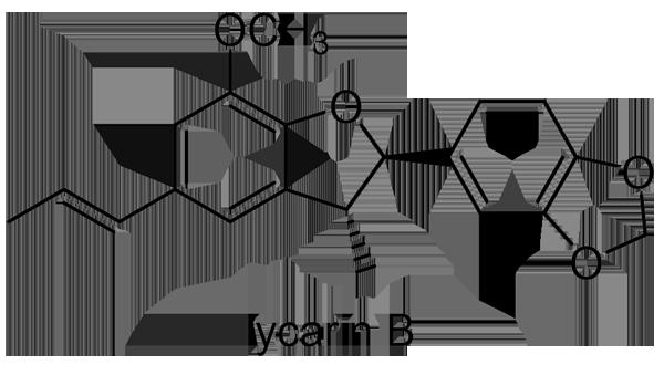 タブノキ 化学構造式2