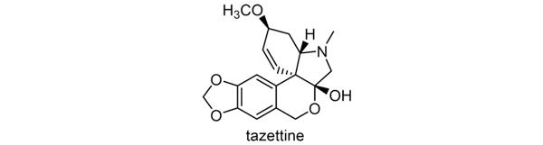 タマスダレ 化学構造式2