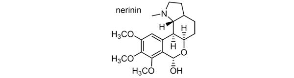 タマスダレ 化学構造式3