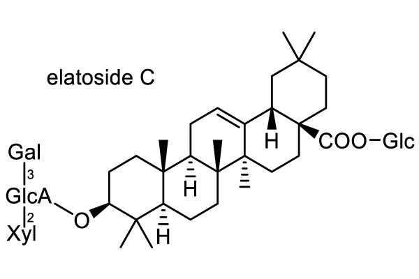 タラノキ 化学構造式3