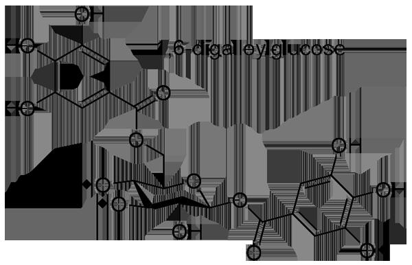 タンキリマメ 化学構造式3