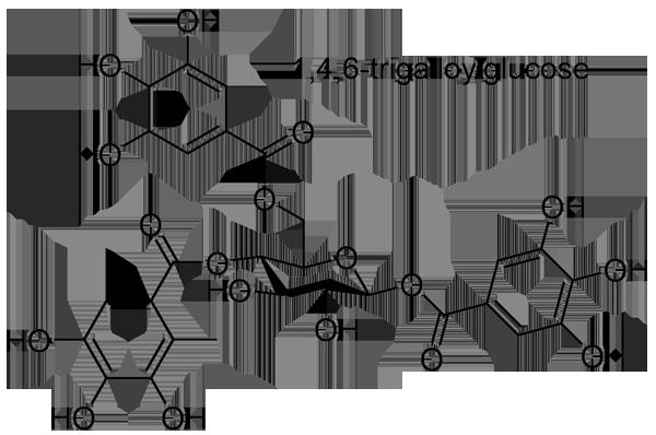 チャンチンモドキ 化学構造式3