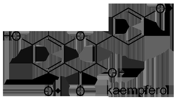 ナニワイバラ 化学構造式2