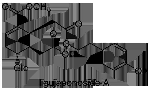 ネズミモチ 化学構造式2